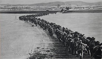朝鲜战争中美双方伤亡人数