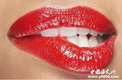 亲吻可能源自于灵长类动物为孩子咀嚼食物而后将食物