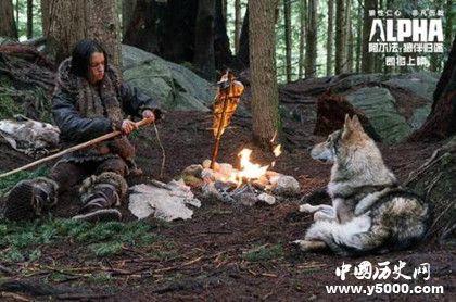电影《阿尔法·狼伴归途》剧情介绍,结局是什么?