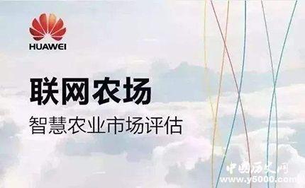 华为与袁隆平合作目的华为与袁隆平合作什么项目?