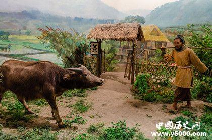 农耕文化的历史发展农耕文化什么时候开始的