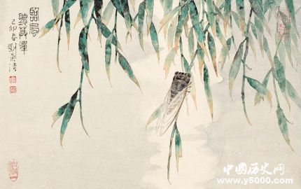 蝉的寓意和象征蝉的一生有什么启示?