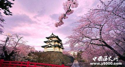 日本樱花节的由来简介日本赏樱花最佳时间是什么时候?