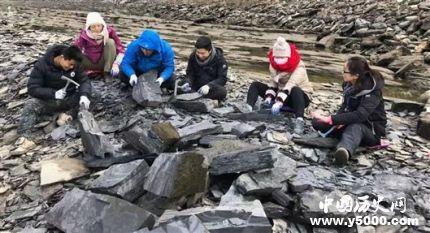 宜昌现清江生物群有哪些价值和意义?