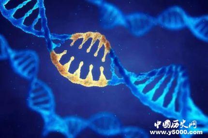 宇航员DNA突变 宇航员DNA突变的原因是什么?