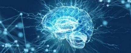 成功复活死亡猪脑 死亡猪脑是怎么复活的?
