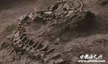 1944年松花江坠龙事件 龙真的存在吗?