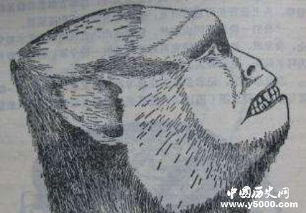 蒙古野人阿尔马斯之谜 阿尔马斯人真的存在吗?