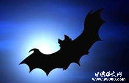 吸血鬼和蝙蝠的关系_吸血鬼为什么能变成蝙蝠_吸血鬼和蝙蝠的传说