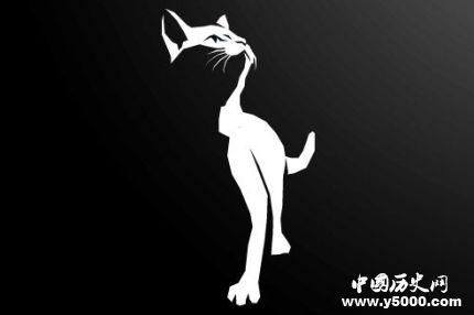 三腳貓功夫什么意思_三腳貓功夫的由來_三腳貓是什么貓