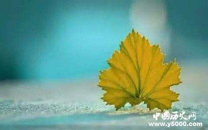泰戈爾最出名的詩_泰戈爾最經典的詩_泰戈爾最著名的詩大全_中國歷史網